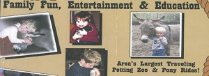 petting zoo, party ideas, party entertainment, baby animals for event, entertainment pittsburgh, bithday entertainement