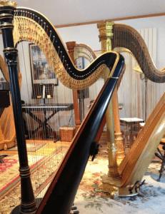 Harpist for wedding entertainment pittsburgh